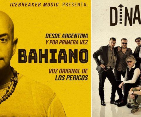 Dinamo + Bahiano